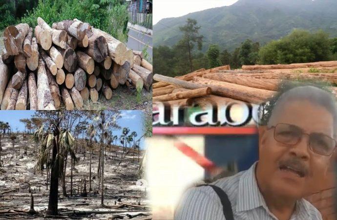 Destruyen las montañas en el noroeste dominicano | El Jarabe Seg-4 10/09/20