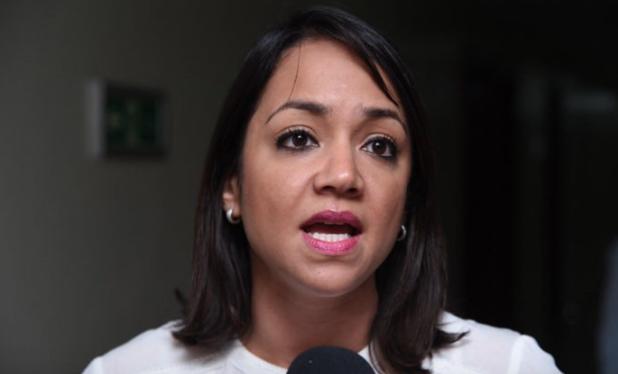 Faride Raful: «propondremos modificaciones sustanciales al proyecto de presupuesto 2021»