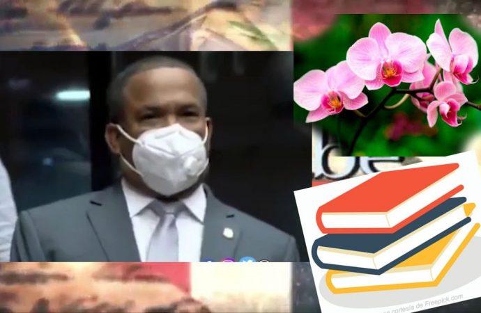 En vez de comprar Orquídeas, Fulcar debe regular colegios | El Jarabe Seg-4 09/10/20