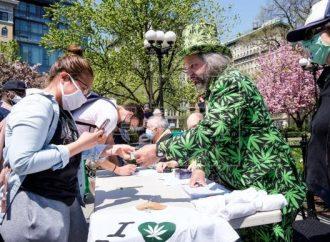 Marihuana gratis para los vacunados de covid-19 en Nueva York
